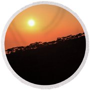 Sunset Over Pine Forest Round Beach Towel