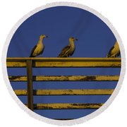 Sunset Seagulls Round Beach Towel