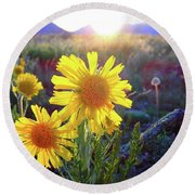 Sunsets And Sunflowers In Buena Vista Round Beach Towel
