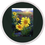 Sunsets And Sunflowers Of Buena Vista 2 Round Beach Towel