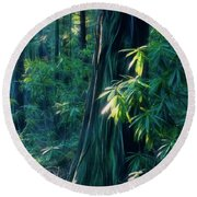 Sunshine In The Forest Round Beach Towel