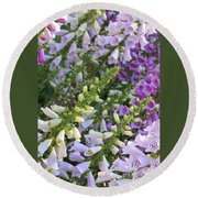 Sunshine On Foxgloves Round Beach Towel