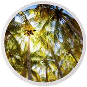 Sunshine Palms Round Beach Towel