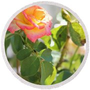 Sunshine Rose Round Beach Towel