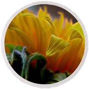 Sunshine Sunflower Petals Two Round Beach Towel