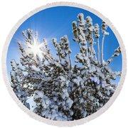 Sunshine Through Snow Covered Tree Round Beach Towel