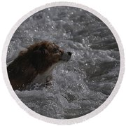Surfer Dog 1 Round Beach Towel