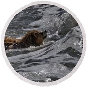 Surfer Dog 2 Round Beach Towel