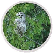 Surprise Visitor  Round Beach Towel