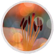 Surrounded By Soothing Sunshine Round Beach Towel