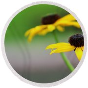 Susans Round Beach Towel