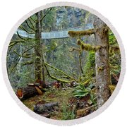 Suspended In The Rain Forest Round Beach Towel