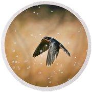 Swallow In Rain Round Beach Towel