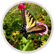 Swallow Tail Butterfly Enjoying The Sunshine Round Beach Towel