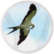 Swallow-tailed Kite Eating Round Beach Towel