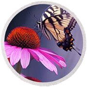 Swallowtail And Coneflower Round Beach Towel