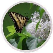 Swallowtail Beauty Round Beach Towel