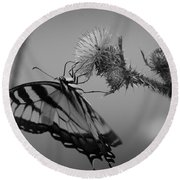 Swallowtail Black And White Round Beach Towel