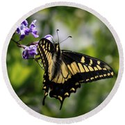 Swallowtail Butterfly 2 Round Beach Towel