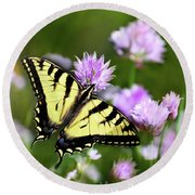 Swallowtail Butterfly Dream Round Beach Towel