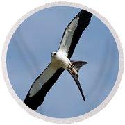 Swallowtail Kite Round Beach Towel
