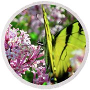 Swallowtail On Korean Lilac Florals Round Beach Towel