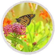 Swamp Milkweed And Monarch Round Beach Towel