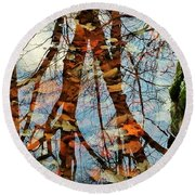 Swamp Reflections Round Beach Towel