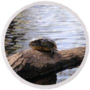 Swamp Turtle Round Beach Towel