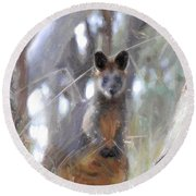 Swamp Wallaby Round Beach Towel