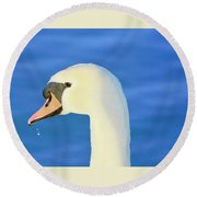 Swan 11 Round Beach Towel