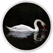 Swan Drinking Round Beach Towel