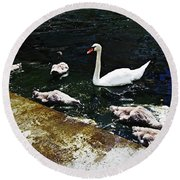 Swan Feather Round Beach Towel