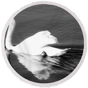 Swan In Motion On A Pond Round Beach Towel