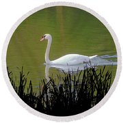 Swan In The Pond Round Beach Towel