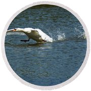 Swan Landing 2 Round Beach Towel