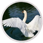 Swan Moment Round Beach Towel