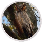 Swan Point Great Horned Owl Round Beach Towel
