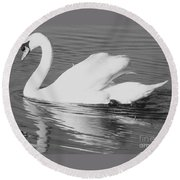 Swan Reflection Round Beach Towel