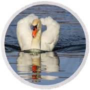 Swan Reflection Round Beach Towel