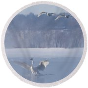 Two Swans Landing Round Beach Towel