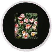 Swanhurst Tulips Round Beach Towel