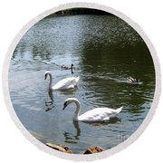Swans And Ducks Round Beach Towel
