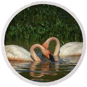 Swans In A Pond  Round Beach Towel