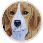 Sweet Beagle  Round Beach Towel
