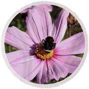 Sweet Bee On Pink Cosmos - Digital Art Round Beach Towel