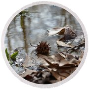 Sweet Gum Seed Pod In Mississippi Winter Round Beach Towel
