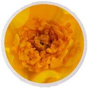 Sweet Heart Of Yellow Rose Round Beach Towel