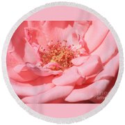 Sweet Pink Rose  Round Beach Towel