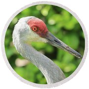 Sweet Sandhill Profile Round Beach Towel